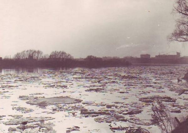 Лед растаял на берегу Шелепихи