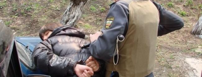 Задержаны напавшие на пенсионера Шелепихи